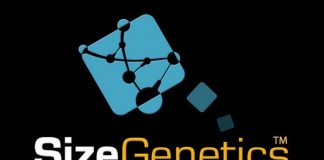 sizegenetics main logo