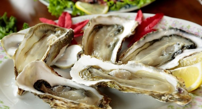 oysters on plate with ice