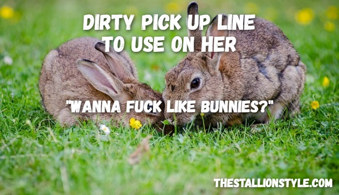 bunnies pick up line