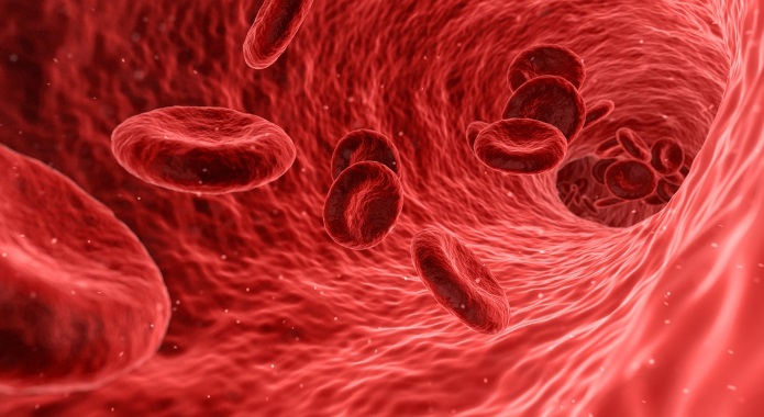 blood cells desktop
