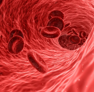 blood cells mobile
